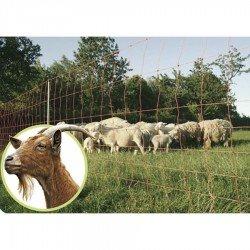 Malla conductora para Cabras Rollo de 50 m