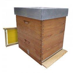 Colmena abejas Langstroth enlazada con alza CON cera