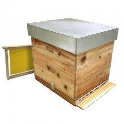 Colmena abejas Langstroth Cryptomeria media alza con cera
