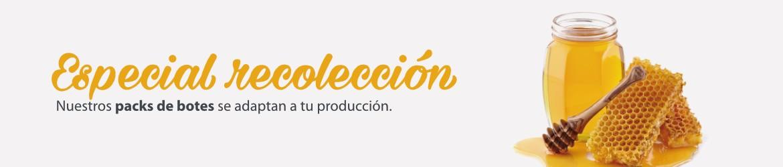 Apicultura Especial recolección