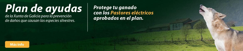 Pastores eléctricos do plan de Axuda para a prevención de danos Xunta de Galicia 2020